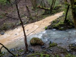 rivers-converging