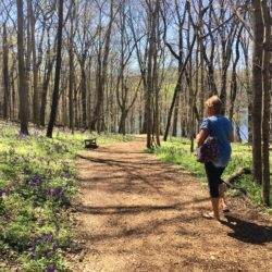 Hiking at Radnor Lake
