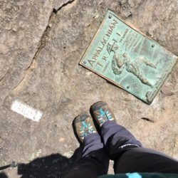 The first blaze on the NOBO trail