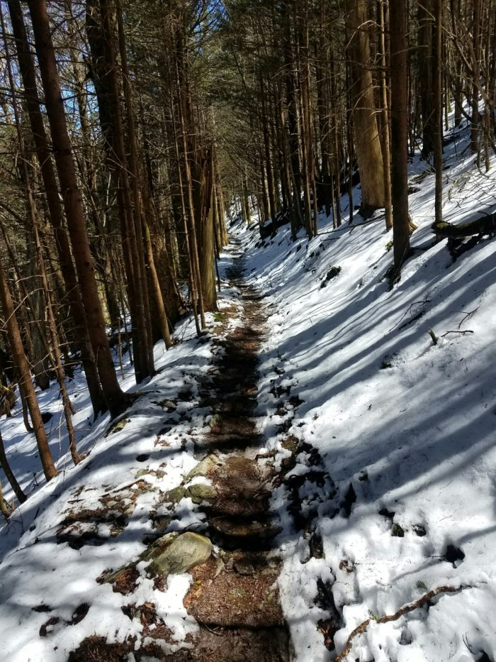snowy-trail