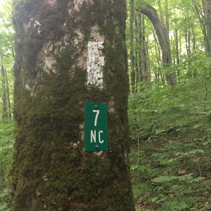 North Carolina Blaze and Mile Marker