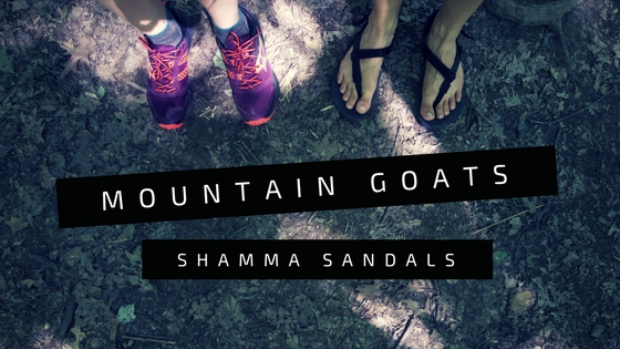 I put the Shamma Mountain Goats to the test to figure out just how  competitive they are. 84d1824aacc