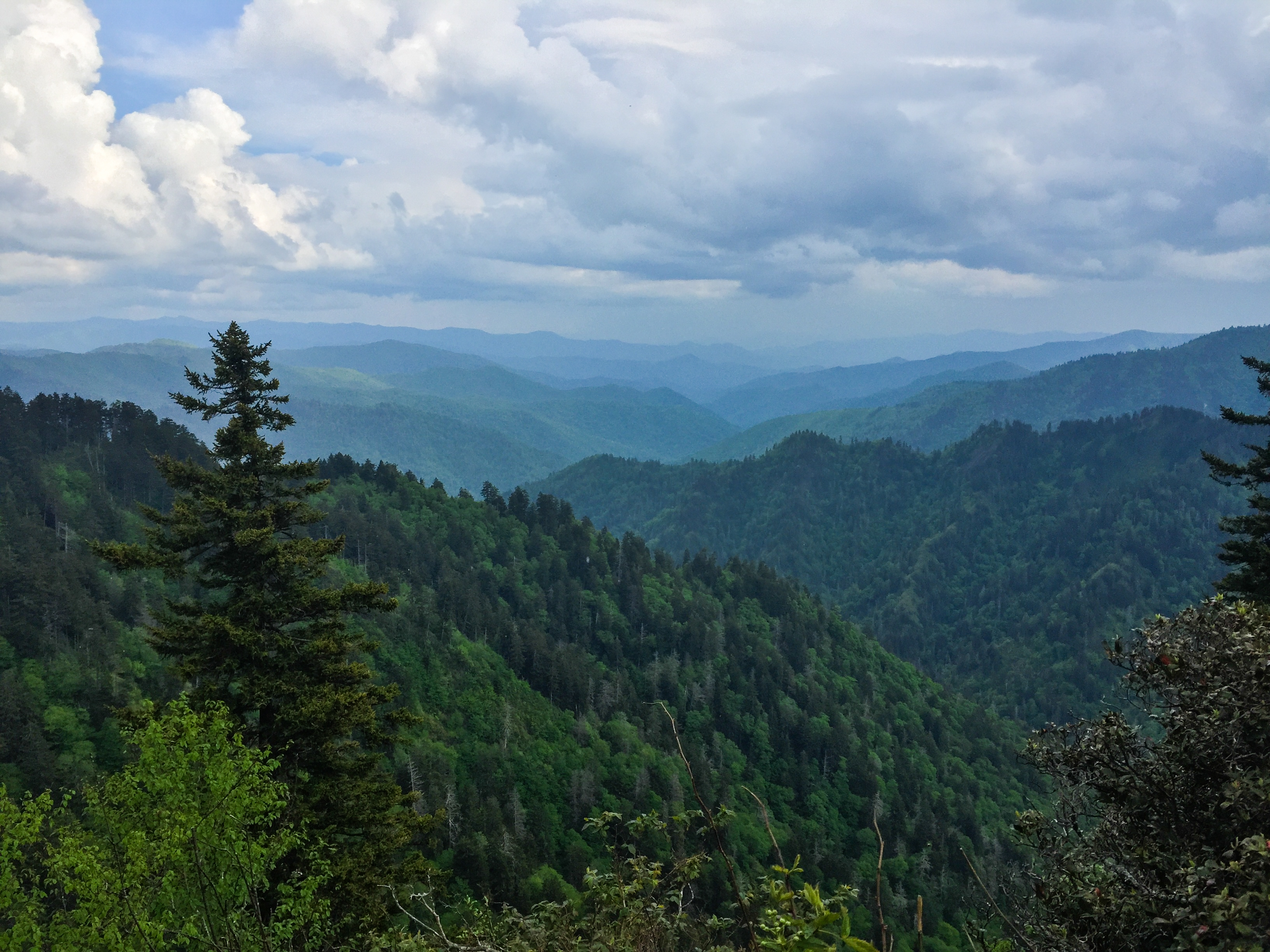 Great Smoky Mountains NP: Must-See Day Hikes on the AT