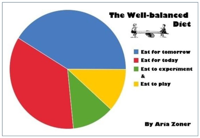 The Well-balanced Diet - Aria Zoner