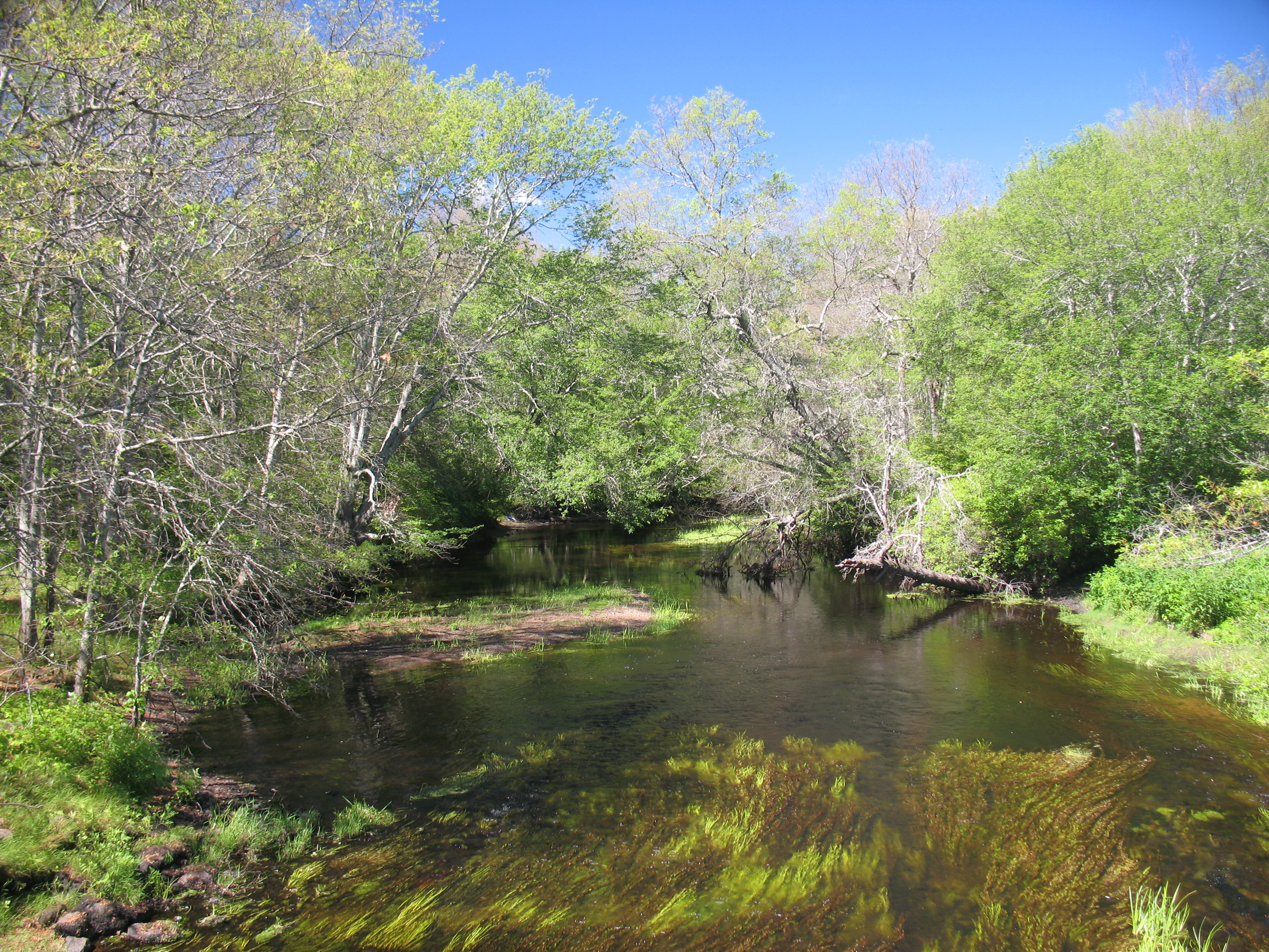Rhode Island North South Trail: 78 Miles From the Atlantic Ocean to Massachusetts