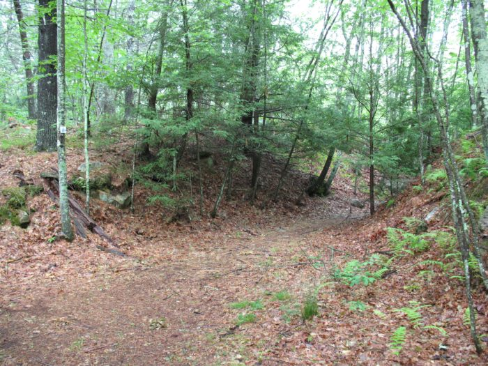 RI North South trail junction