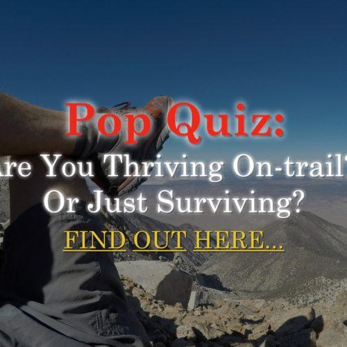 Pop Quiz: Thriving or Surviving - Aria Zoner