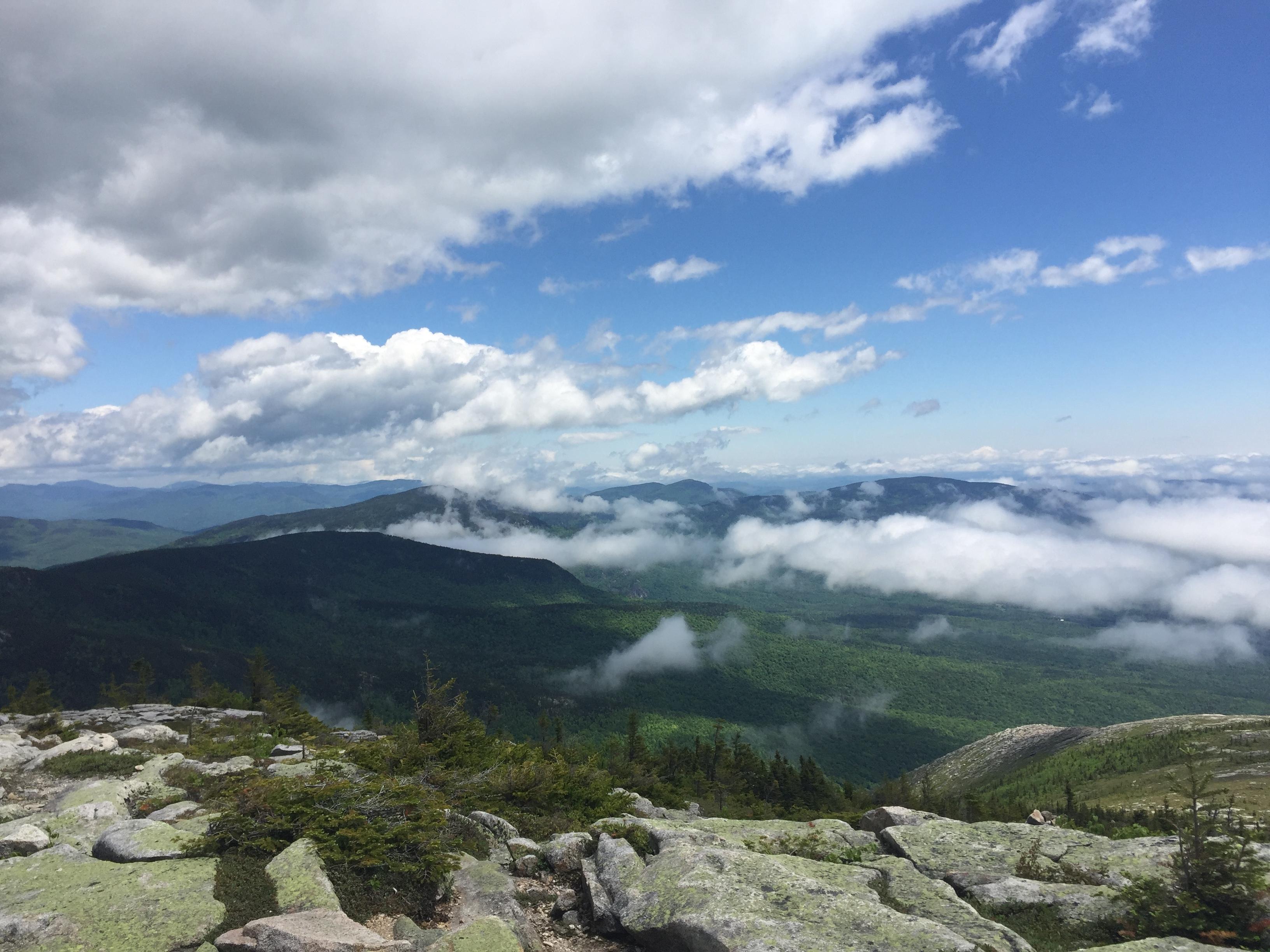 Baldface Trail - New Hampshire | AllTrails