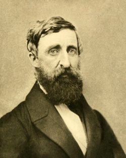 a photo of henry david thoreau - author of many books