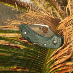 Spyderco Dragonfly 2 outdoors