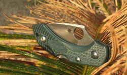 Spyderco Dragonfly 2 in the outdoors