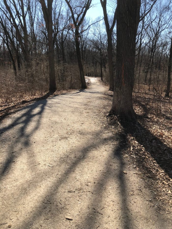 Sag Trail