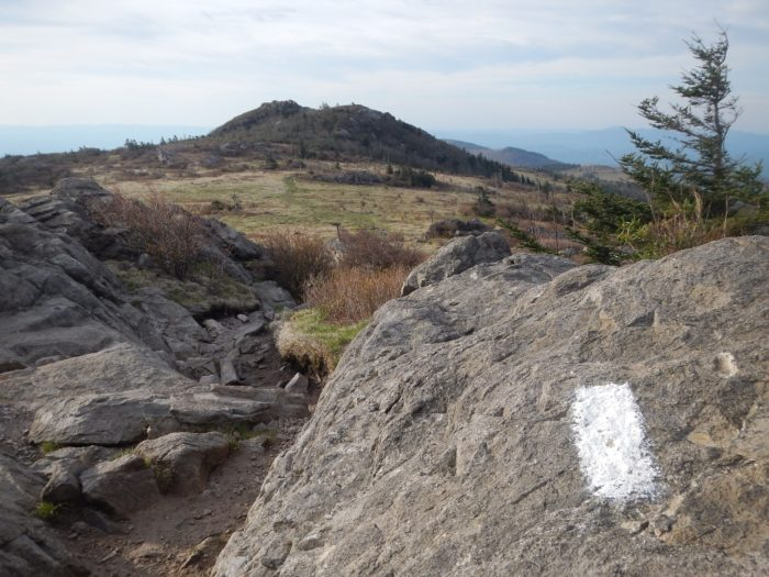 Grayson Highlands on the Appalachian Trail in Virginia. Tips for Section Hiking the Appalachian Trail in Virginia.