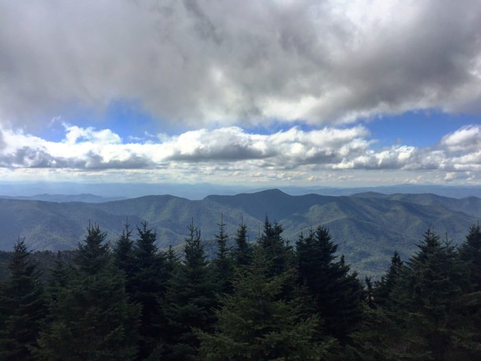 Best Hikes in the Southeast: Mount Mitchell