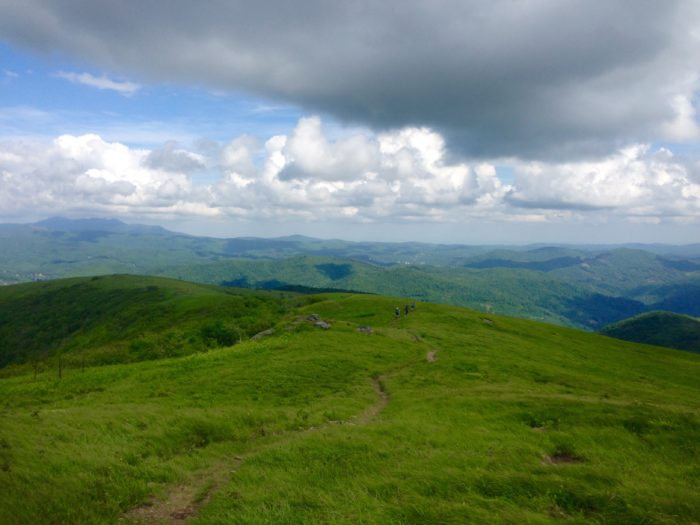 Best Hikes in the Southeast: Roan Highlands