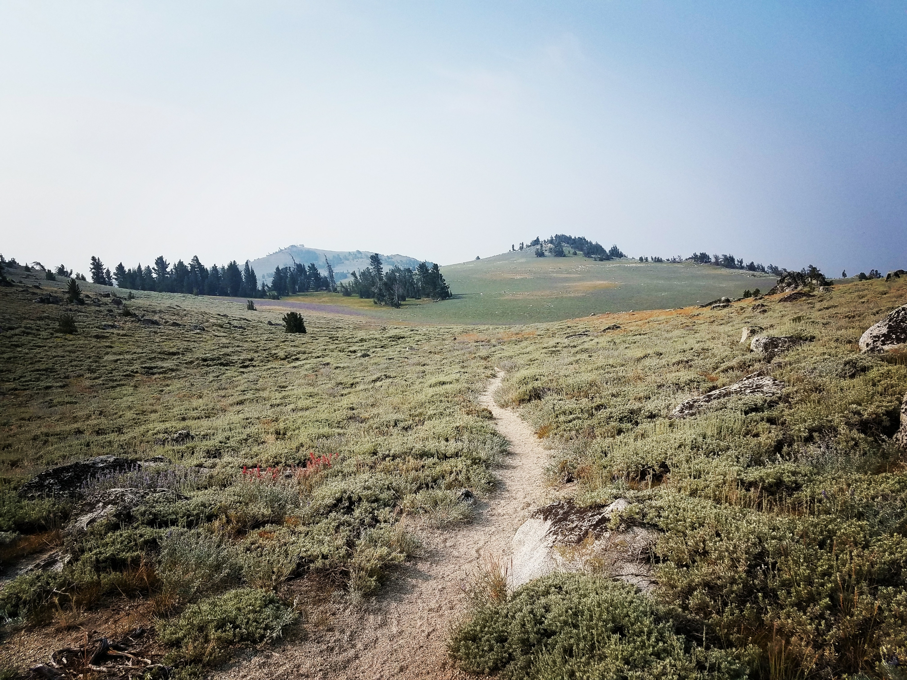 Tahoe Rim Trail - Backpacking Light