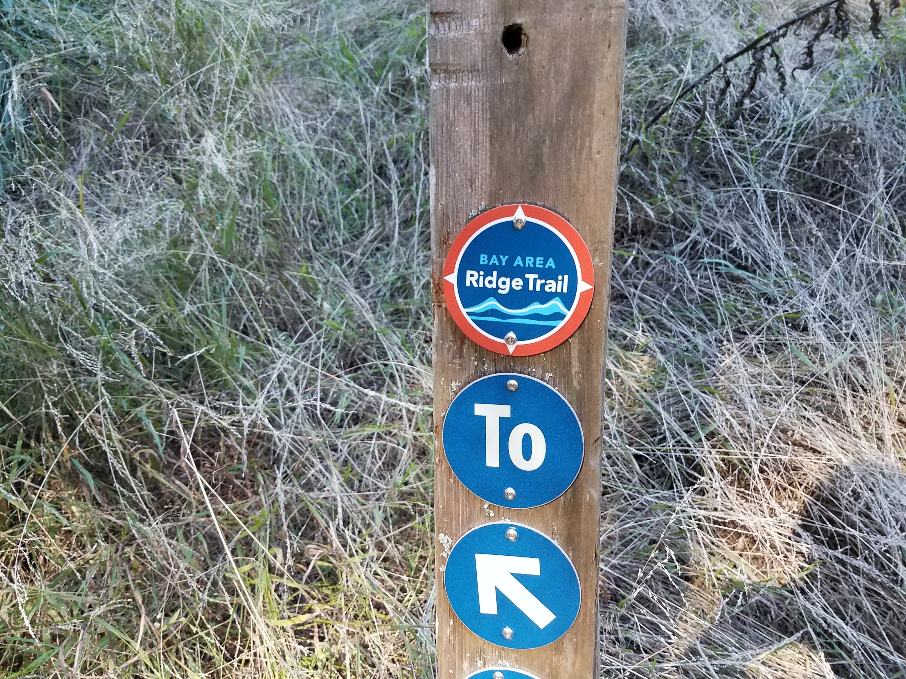 Discovering the 550-Mile Bay Area Ridge Trail