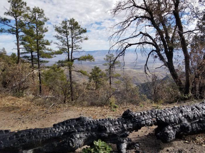 Arizona, AZT, Santa Catalina Mountains