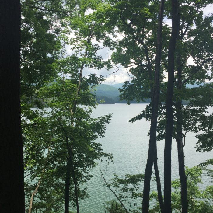 Fontana Lake through the trees