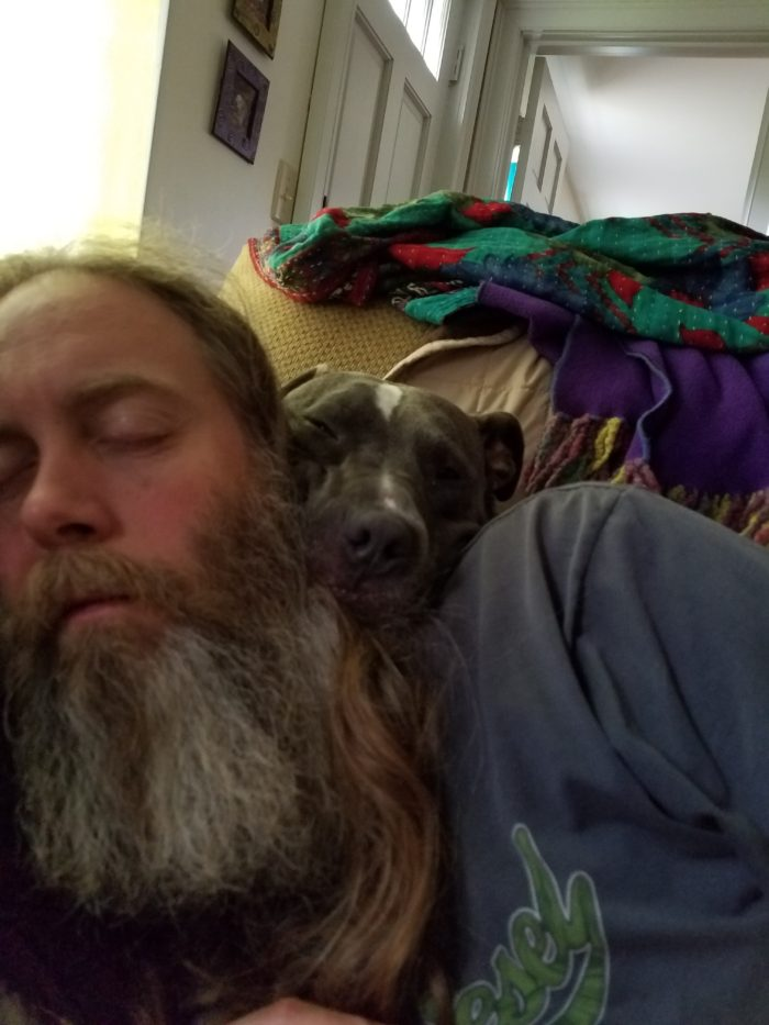 recovering with dog naps