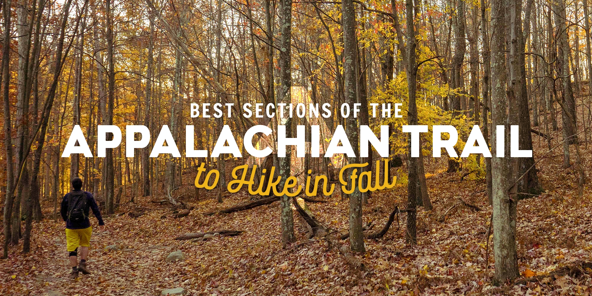 Best Sections of the Appalachian Trail to Hike in the Fall