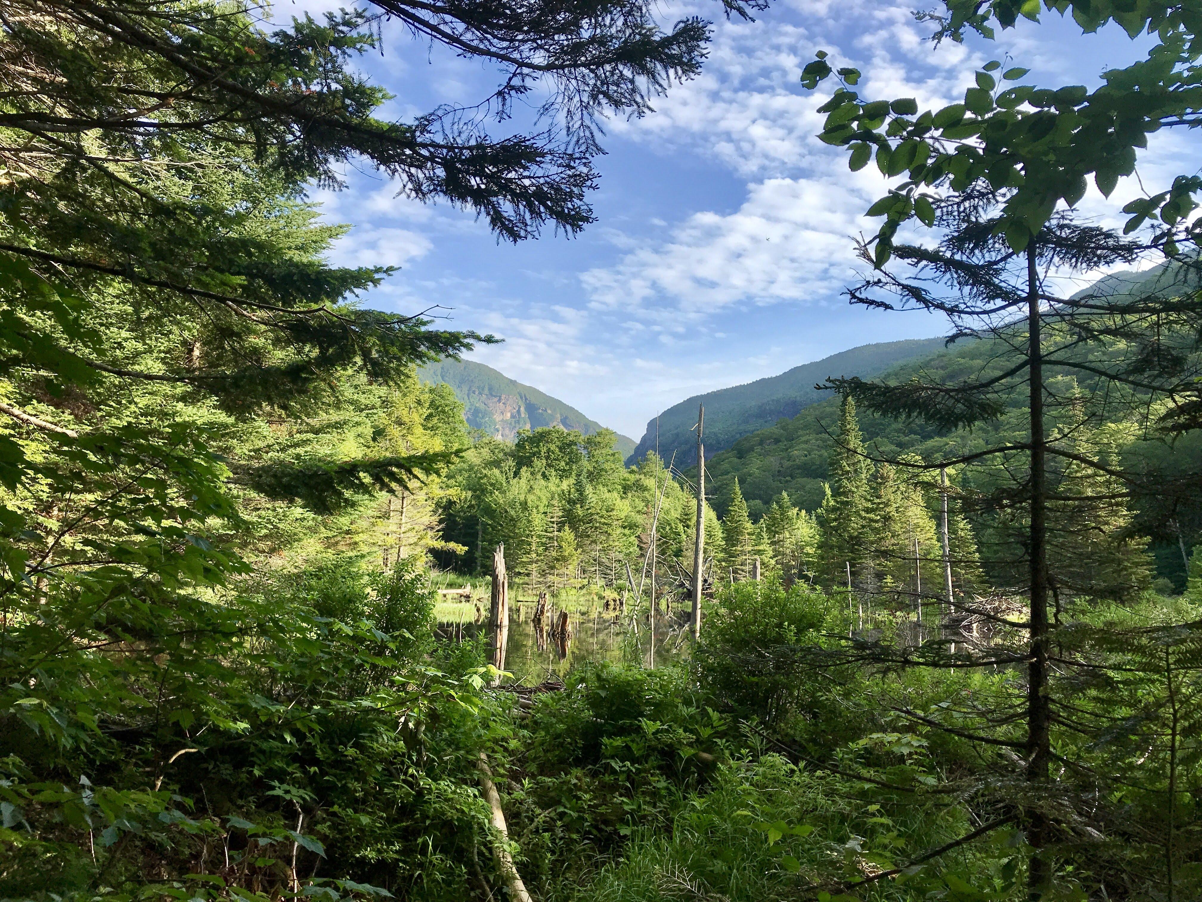 A Day Hiker Turned Thru-Hiker