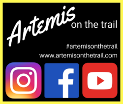 artemis on the trail at 2019