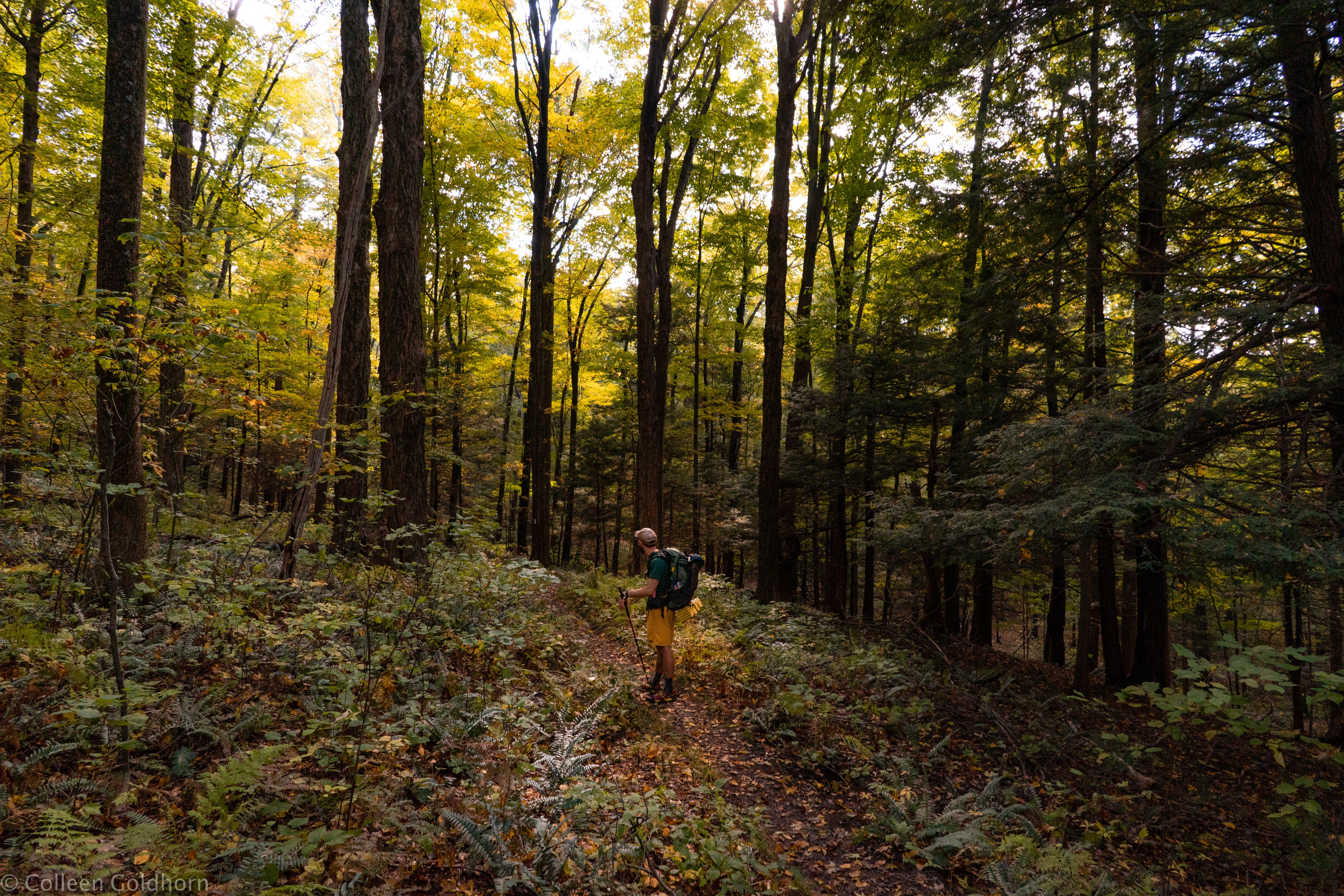 Closing the Gaps in Our National Scenic Trails: An Interview With Jim Kern - The Trek