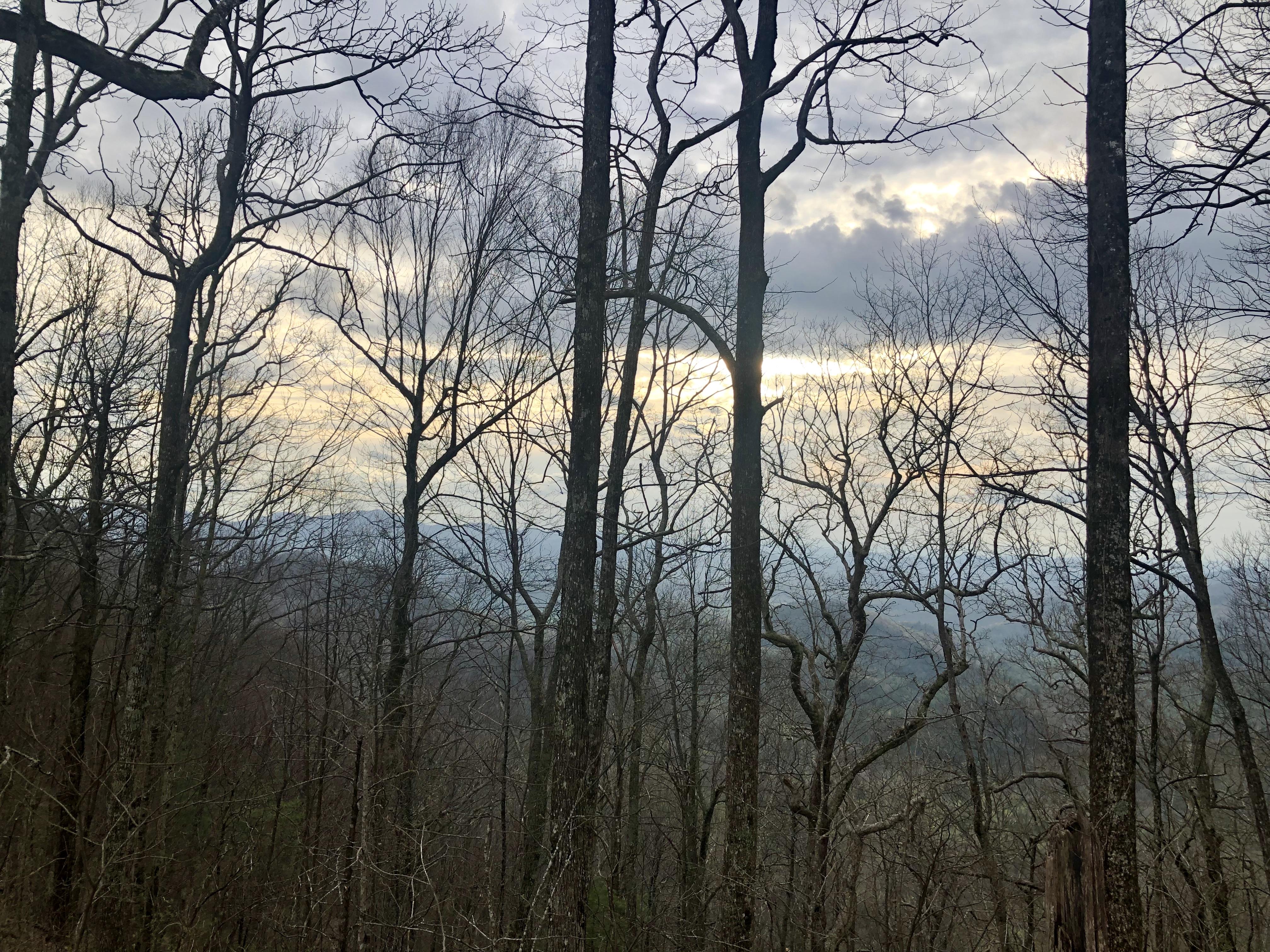 Steph's AT Hike Days 5-8: From Woody Gap to Hiawassee, GA
