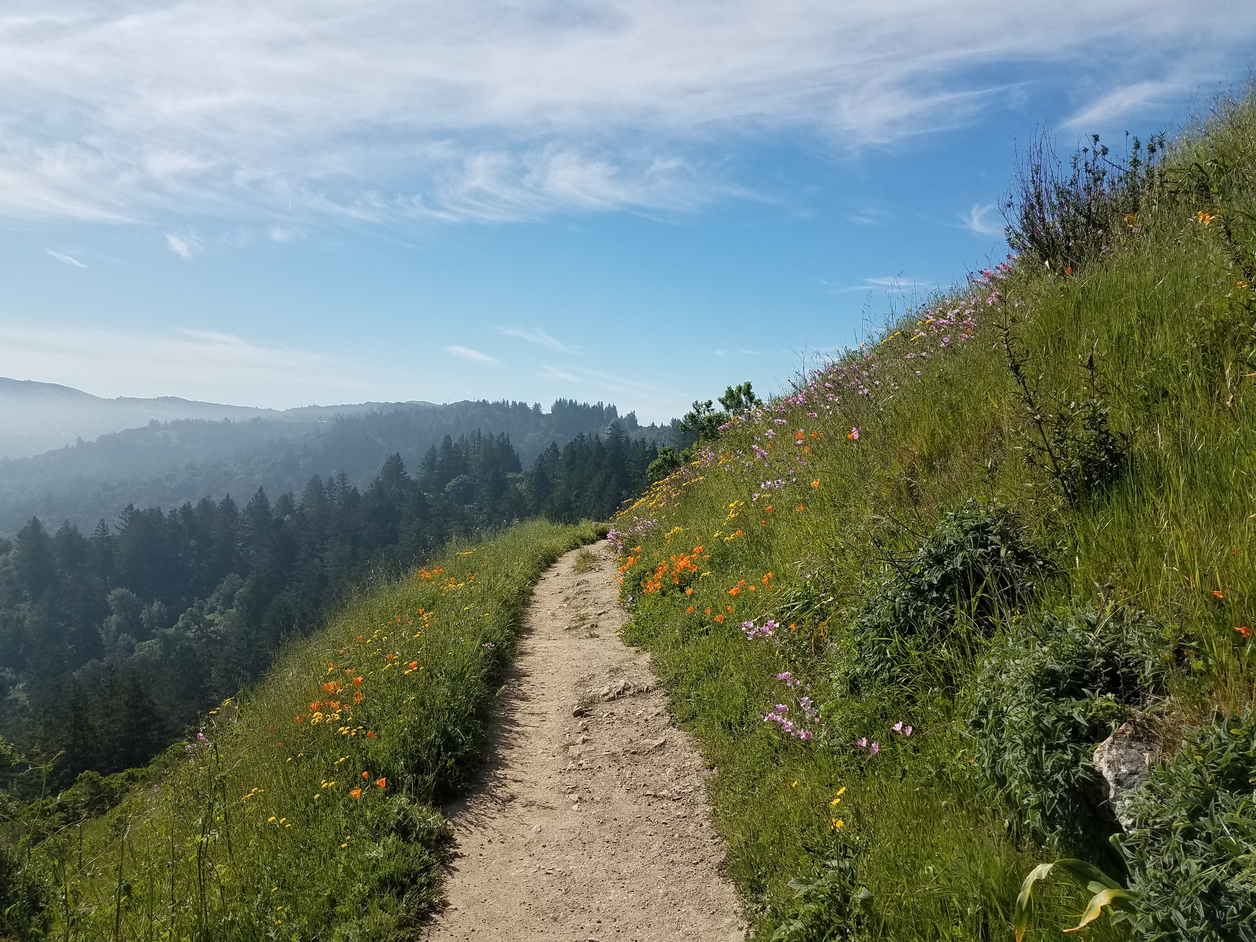 Some Thoughts on Thru-Hiking - The Second Time - The Trek