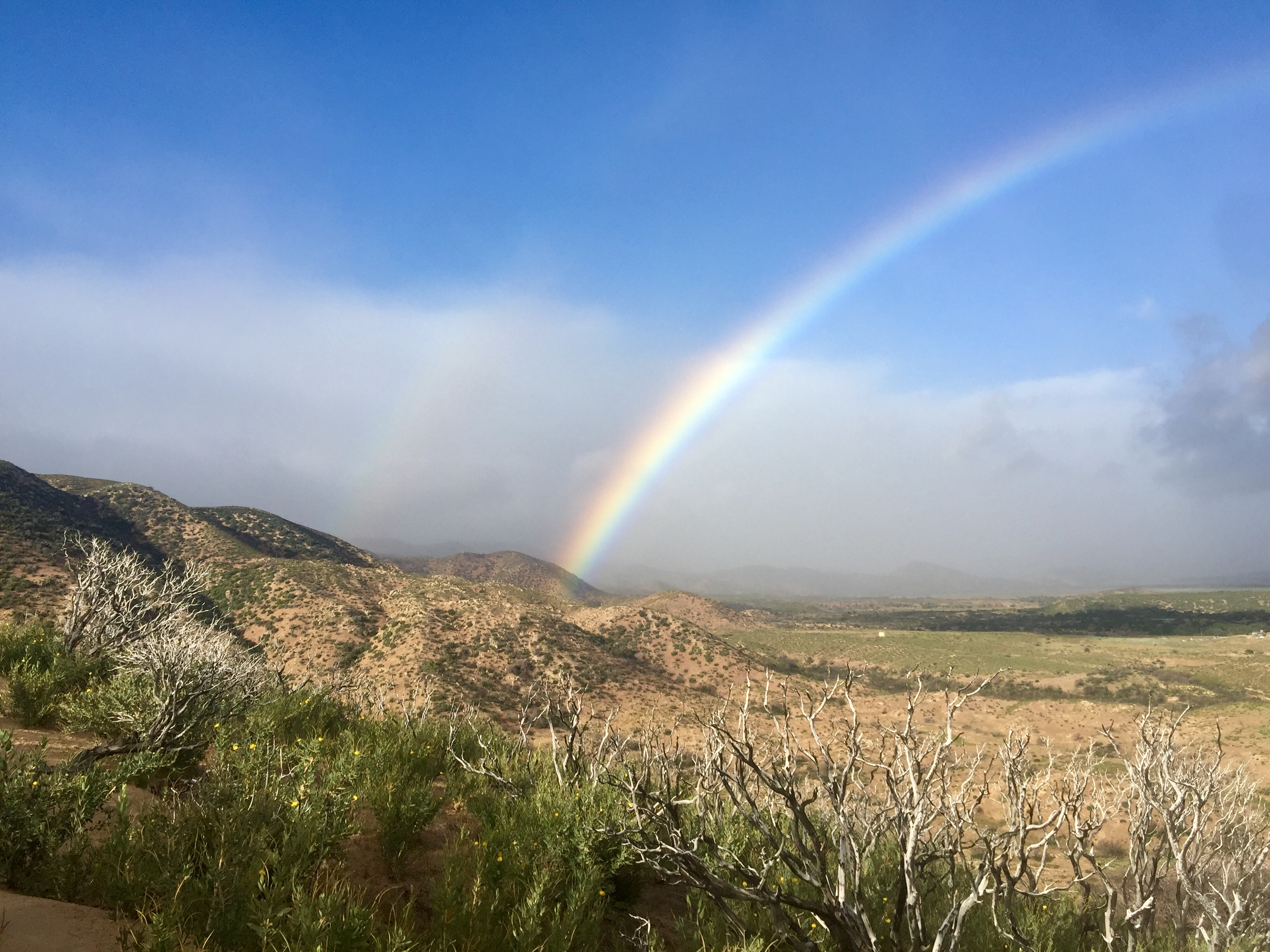 Chasing Rainbows - The Trek
