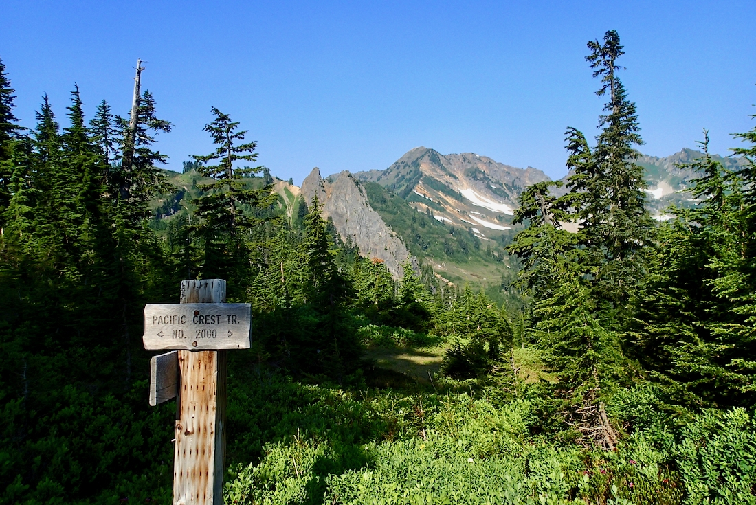 PCT trail sign in front of forest and mountains