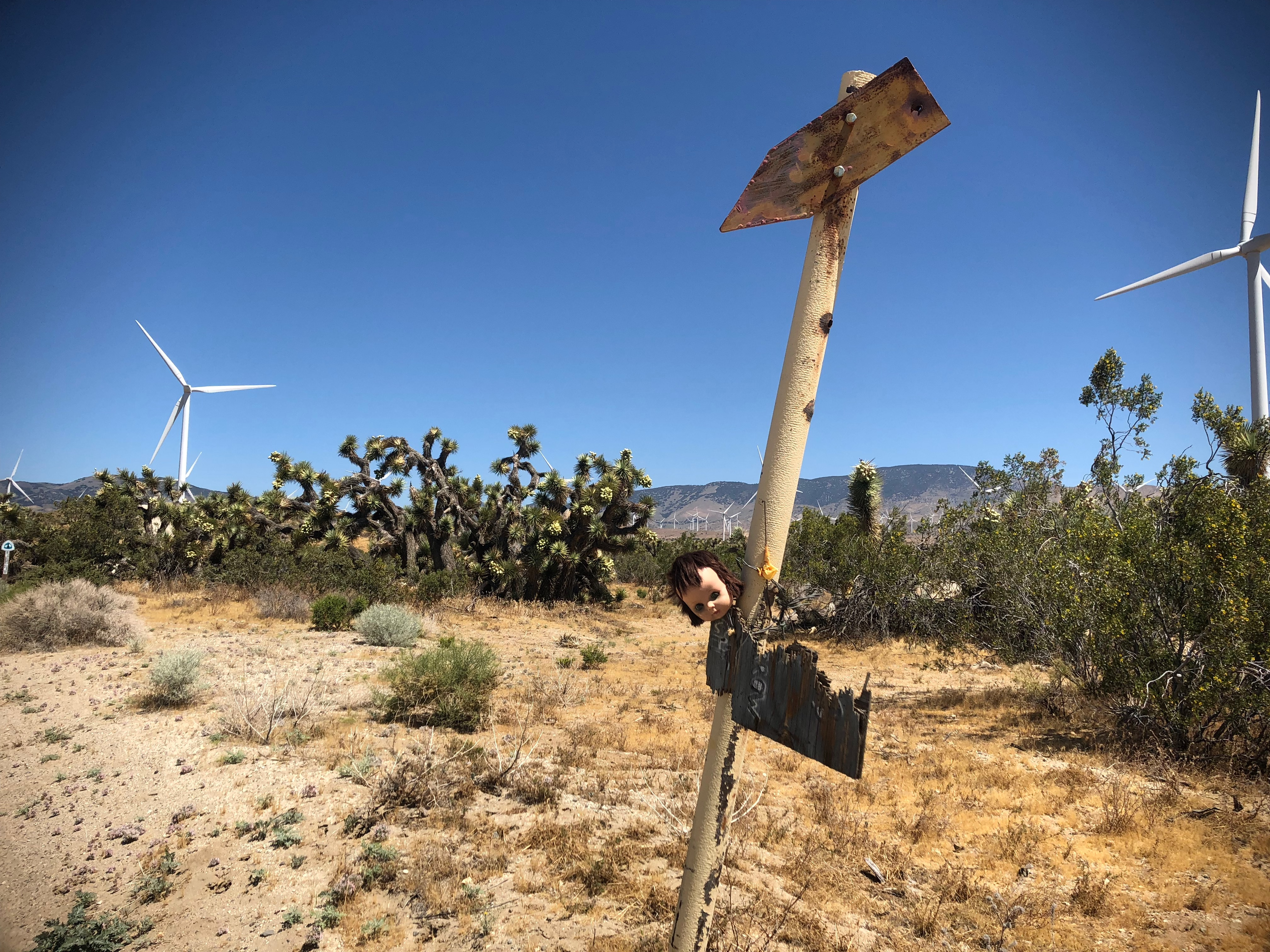 Days Seven to Ten: Night Hiking, Wind Farms, and MAGIC - The Trek