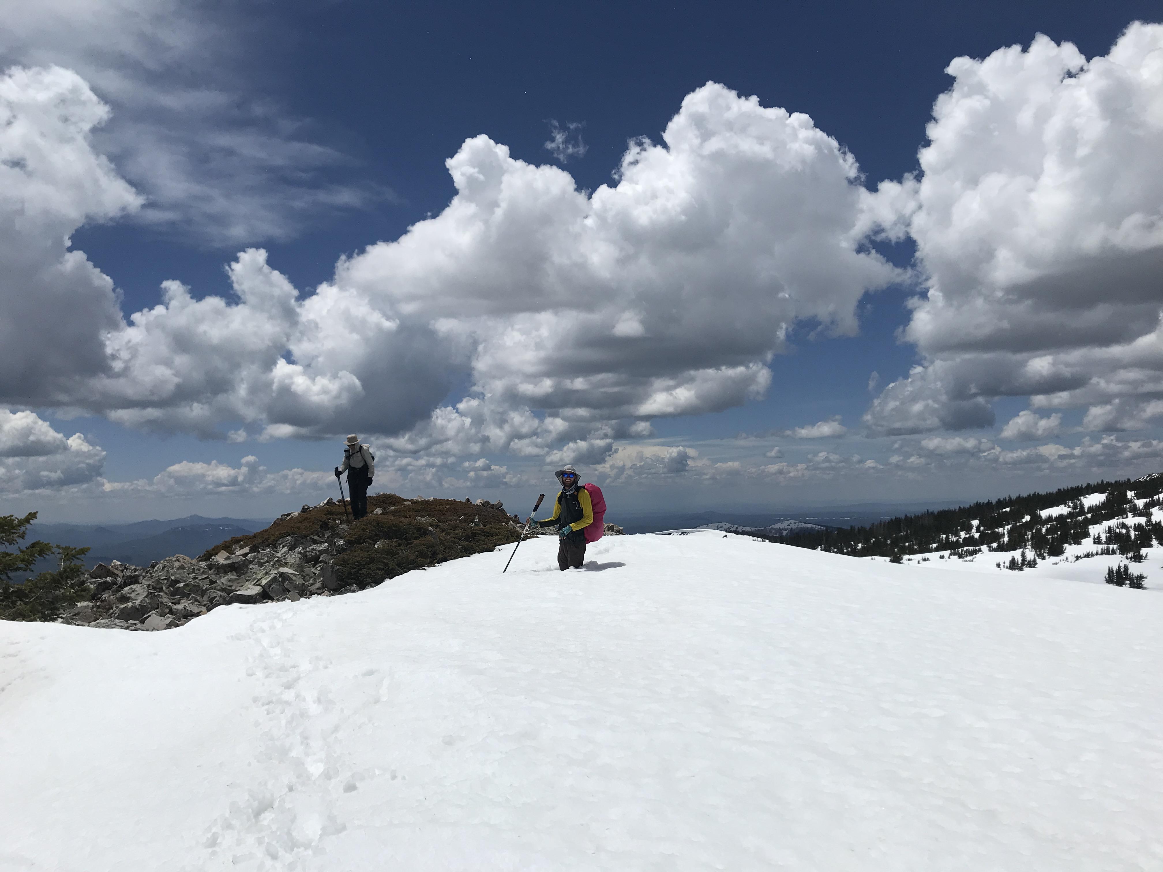 Bonnymans snow foam