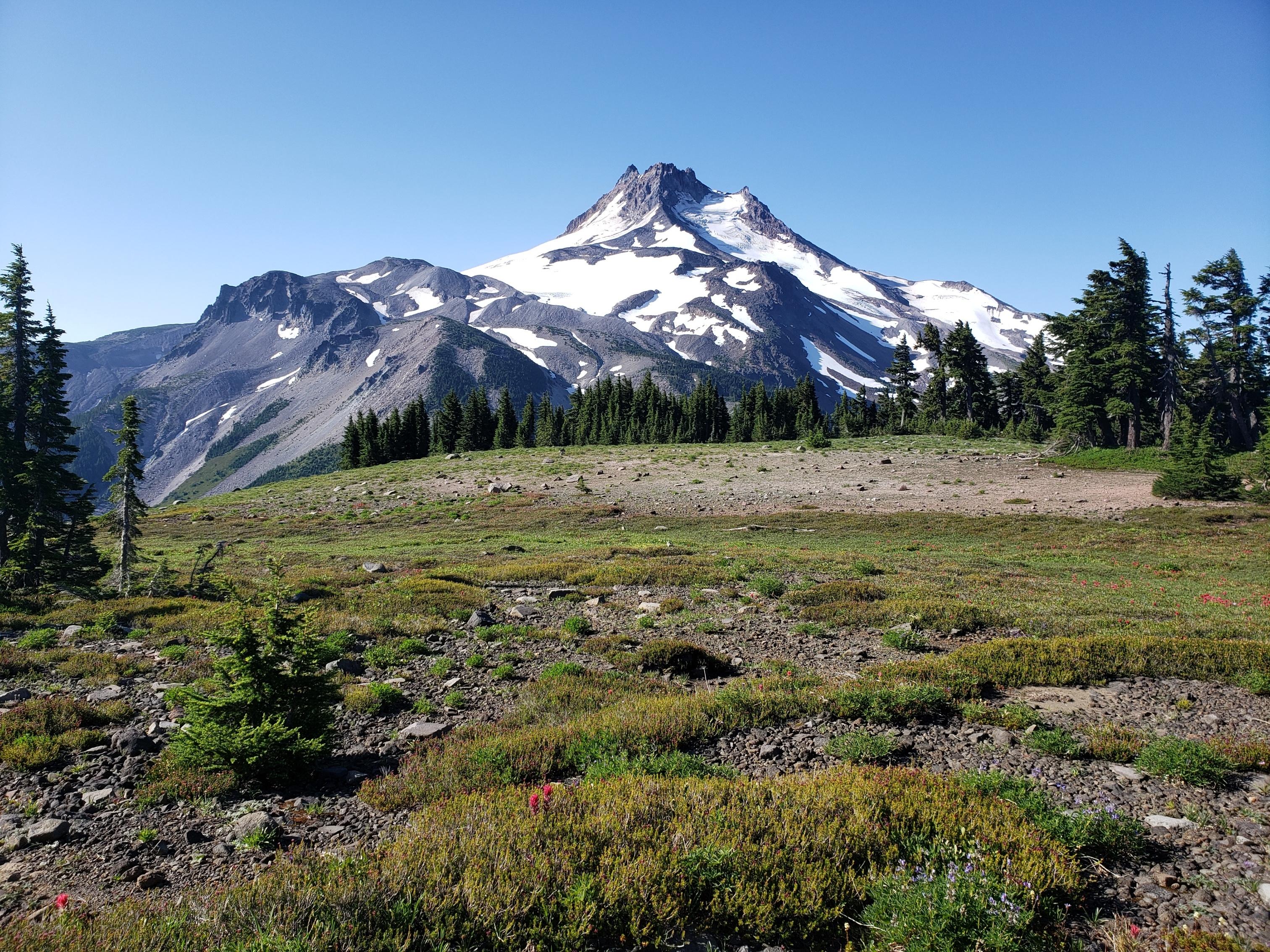 Cascade Locks to Ashland: In Which I Hike Through (Most of) Oregon - The Trek