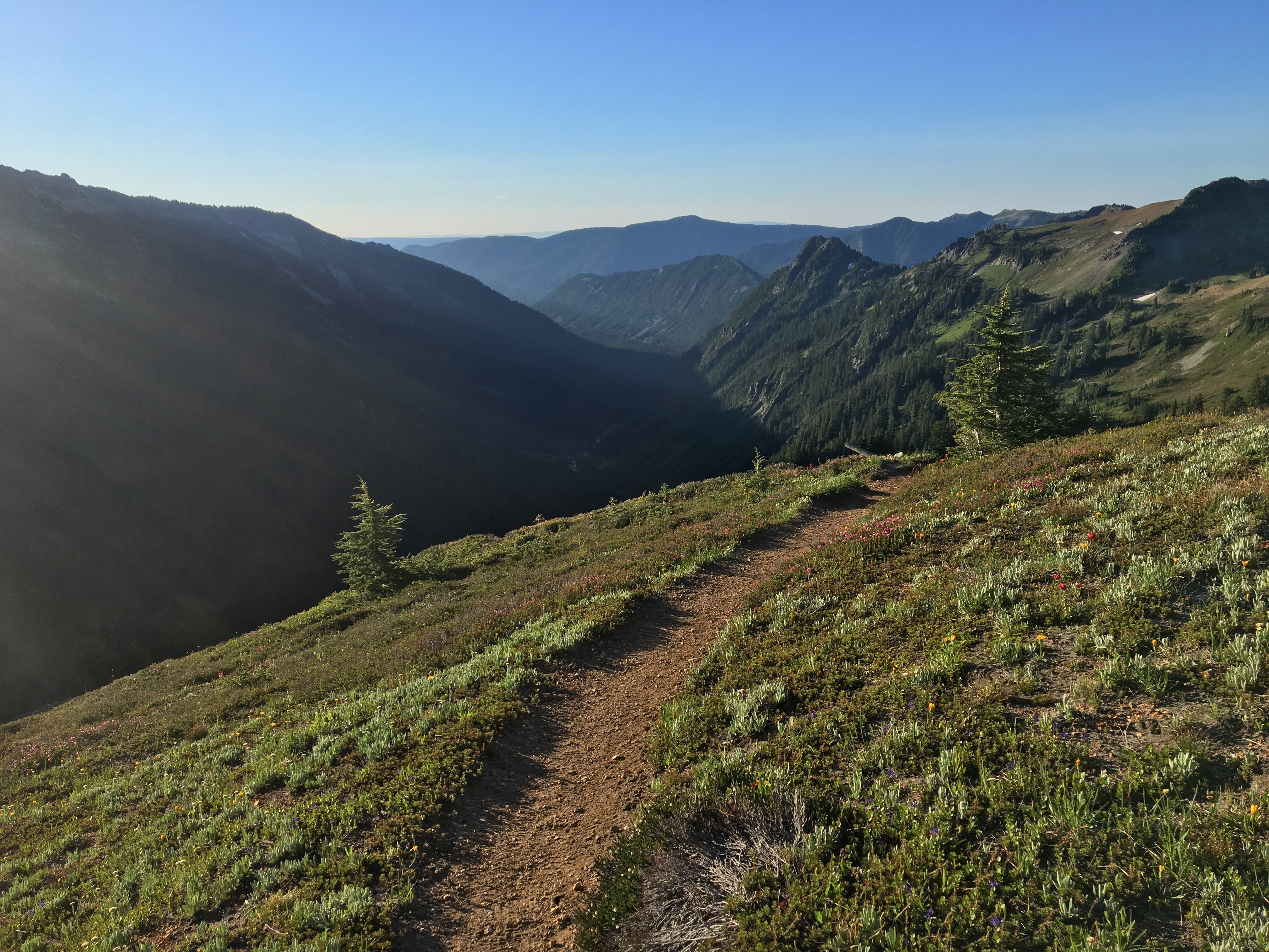 Challenges Transitioning to Post-Trail Life - The Trek