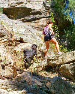 Hiker Intro - The Trek