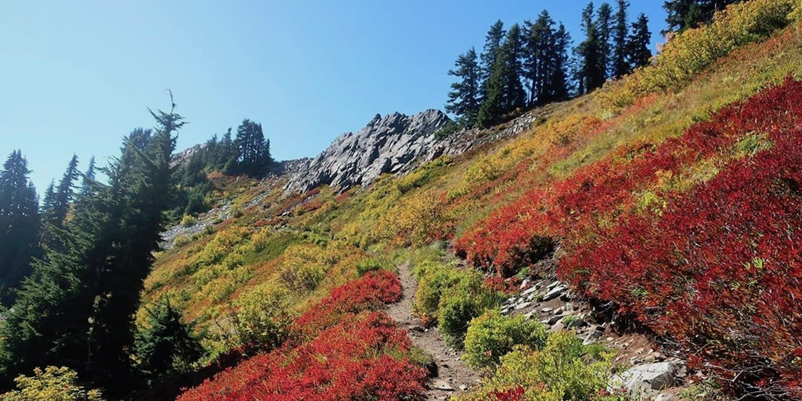 This Week's Top Instagram Posts from the #PacificCrestTrail - The Trek