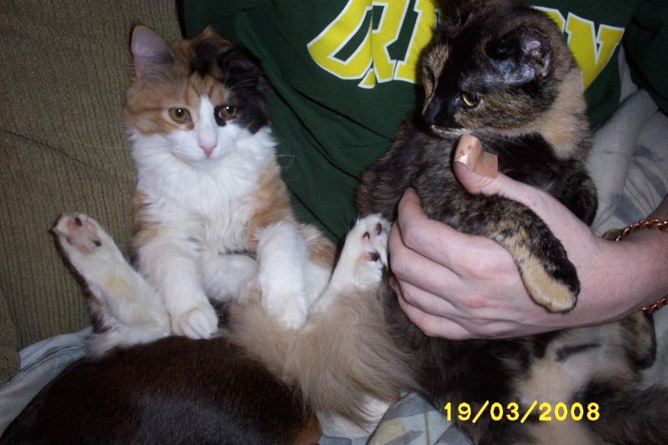 Petunia and Josephine