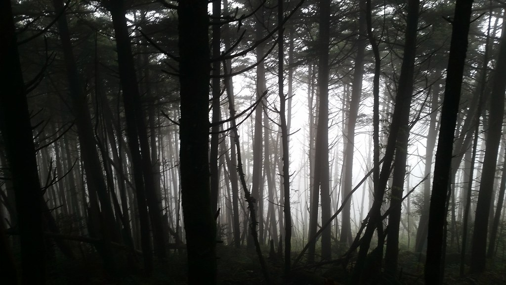Spooky Season on the AT: My Top 10 Thru-Hiking Fears - The Trek