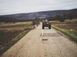Hiking in Serbia