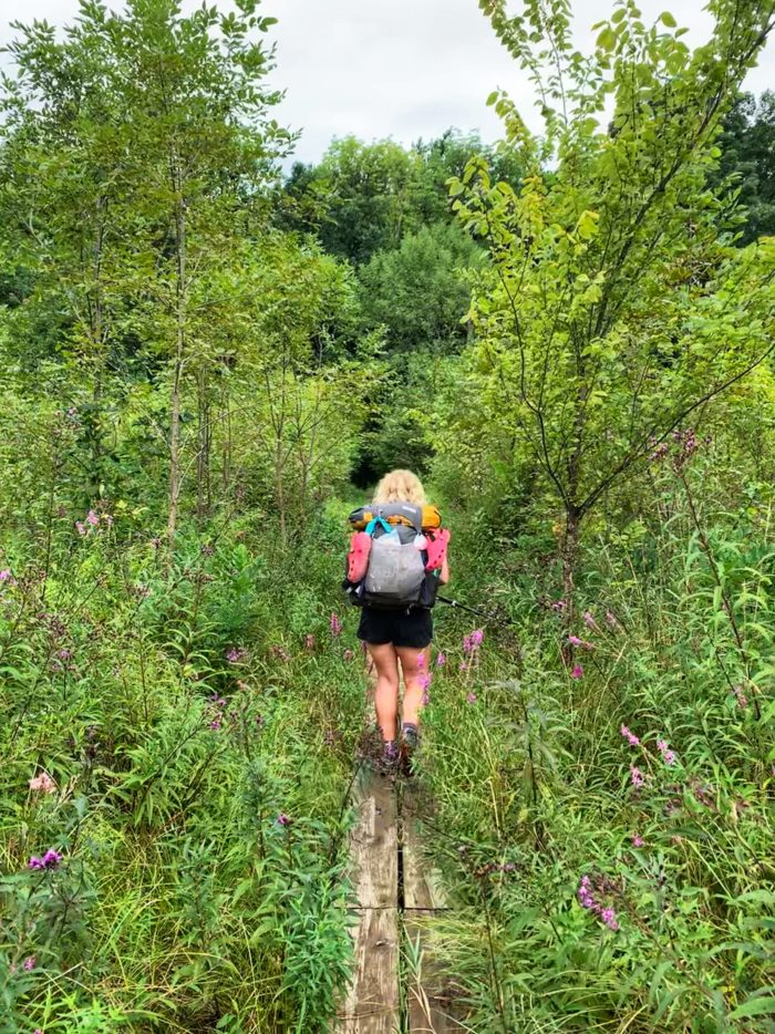 Girl hiking away on wooden boards through high green woodland
