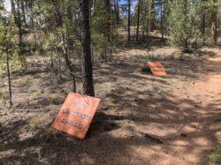 Flying Debris Signs