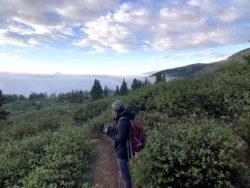 Taylor and Mt. Massive Trail