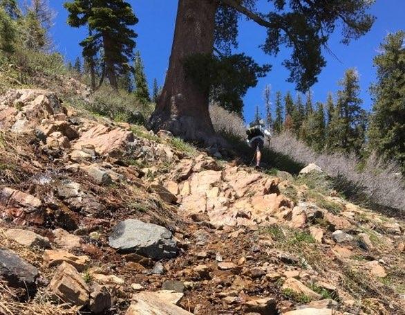 Hoka One One Stinson Mid GTX Hiking Shoe - stream crossing