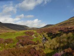 Boggy glen (basically all of Scotland)