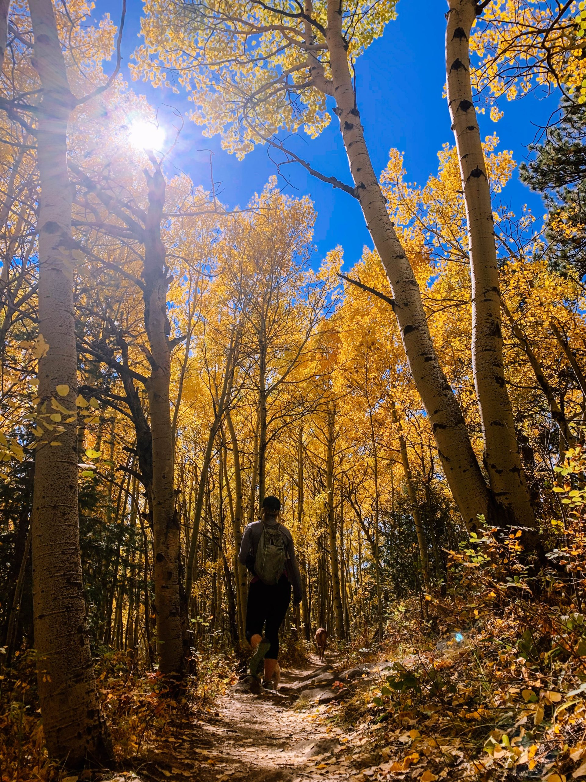 fall foliage hiking photos