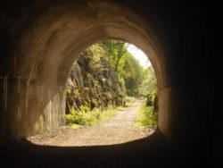 Sweet rail tunnel along Loch Oich