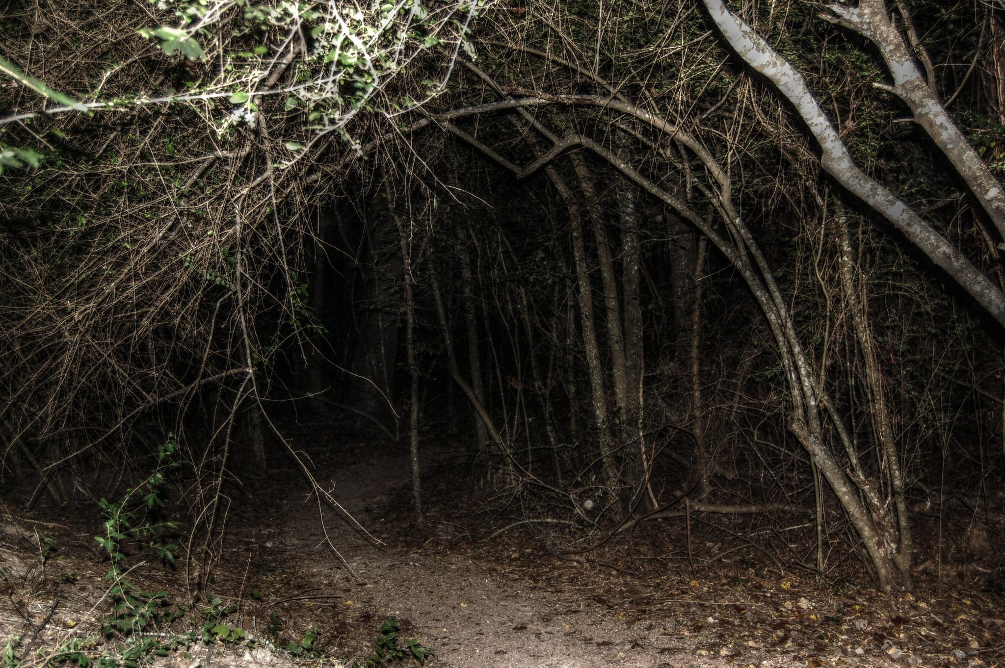 spooky hiking stories