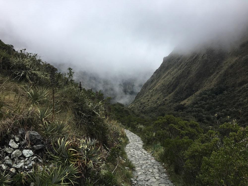 Stone trail